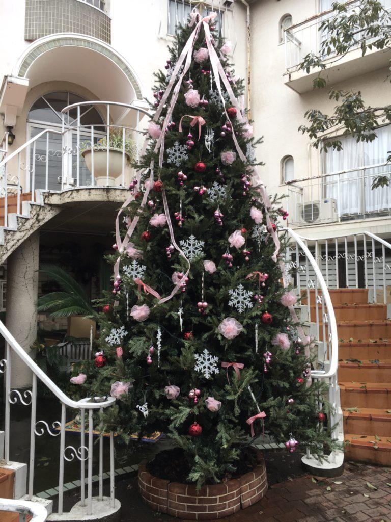 アンジュクリスマスツリー
