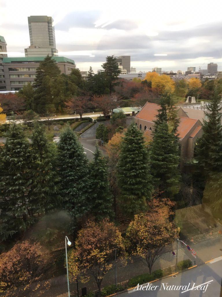 ペイント塾市ヶ谷校10階から眺める景色